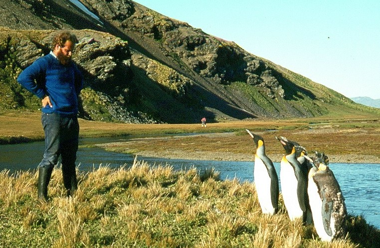 With penguins in Antarctica